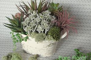 1月のレッスン-2 多肉植物の寄せ植え(造花)